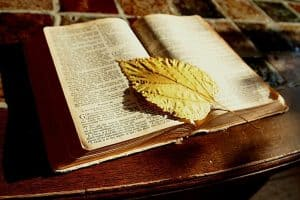 kitap-alanlar